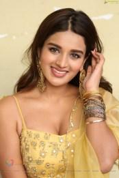 Nidhhi Agerwal (65)