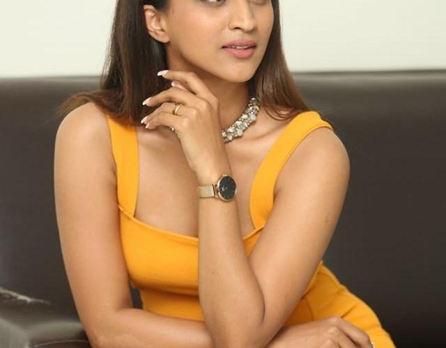 Actress Shruti Shetty at Life Anubhavinchu Raja Press Meet