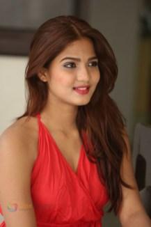 Sravani Nikki (10)
