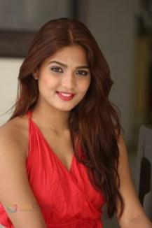 Sravani Nikki (14)