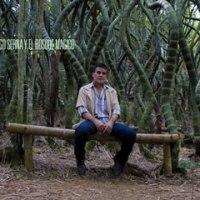 Diego Serna y el Bosque Mágico