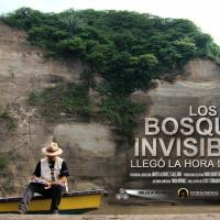 Los bosques invisibles