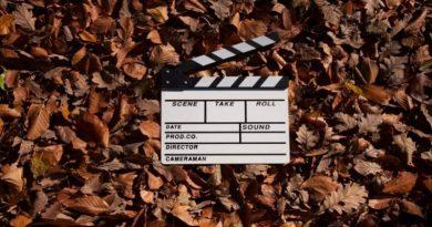Noi filme in noiembrie