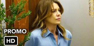 Grey's Anatomy 13x19