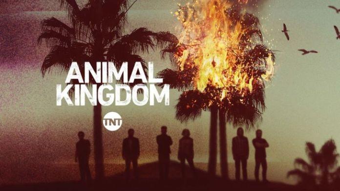Animal Kingdom 5 stagione