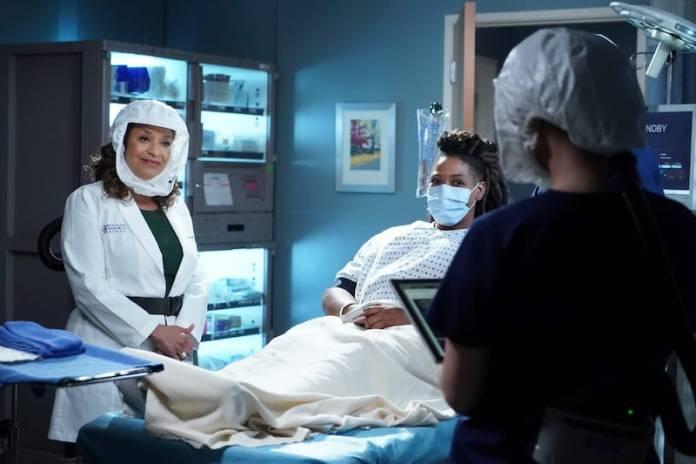 Grey's Anatomy 17x10