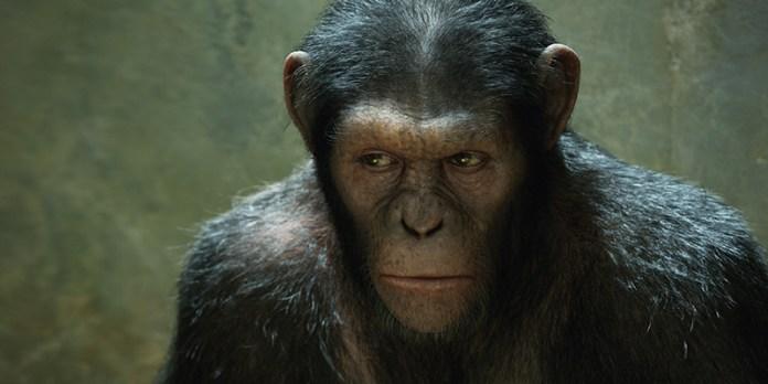 L'alba del pianeta delle scimmie film