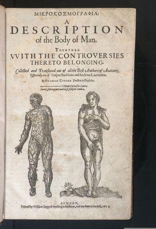 700px-Microcosmographia,_Crooke,_1615_-_0003