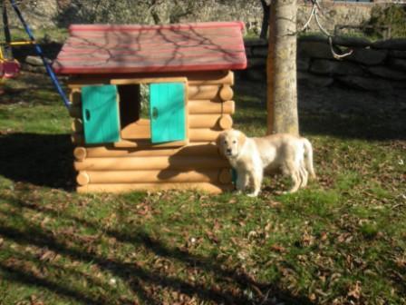 Felix nel parco giochi della Fattoria del Colle