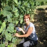 Bonella showing us Sangiovese