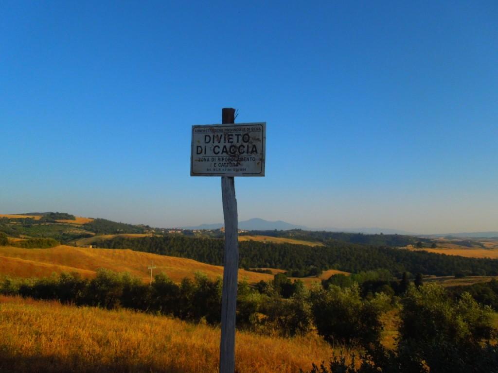 Agriturismo-in-Toscana-Fattoria-del-Colle