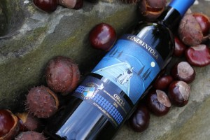 Cenerentola 2010 and chestnuts
