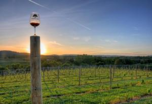 Napa Valley wine destination