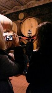 Antonelli  Agivi fa turismo del vino in Umbria