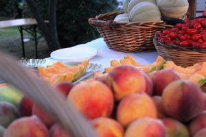 Nannoni festa 2015 frutta