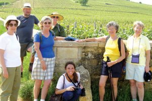 Arblaster-and-Clarke-wine-tours-image