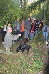 Truffle hunting with tourists