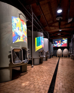 Wine-tour--in- winery-Montalcino