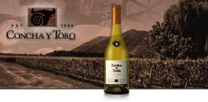 Cocha-Y-Toro-i-big-del-vino