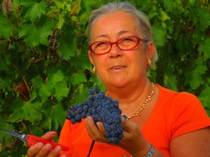 weekend-vendemmia-svinatura-