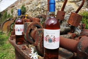Rosato-tendenze-2019-del-vino-italiano