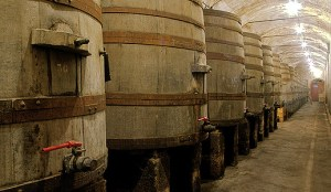 Caves López de Heredia Viña Tondonia