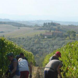 appuntamenti per wine lovers