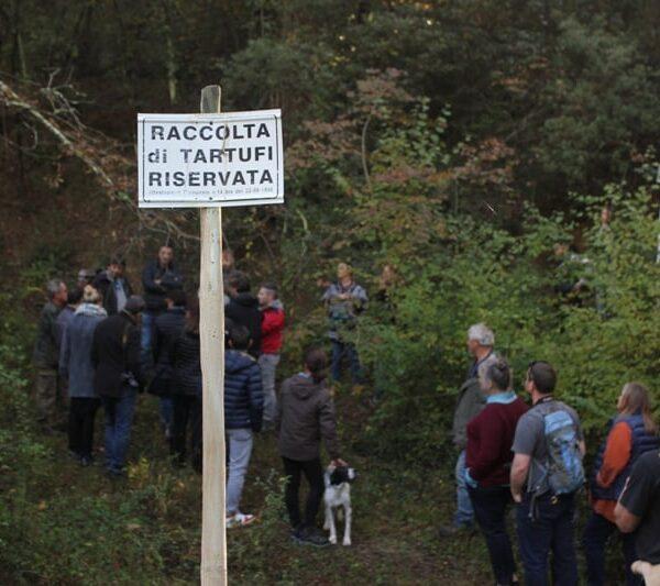 Fattoria del Colle, truffle hunting (1)