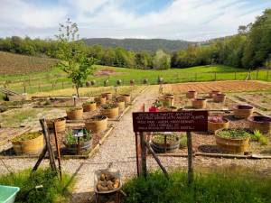 Wine destination: second life of wine barrels - vegetable garden of Fattoria del Colle
