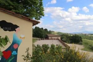 Cantina-di-Cenerentola-Fattoria-del-Colle-Toscana