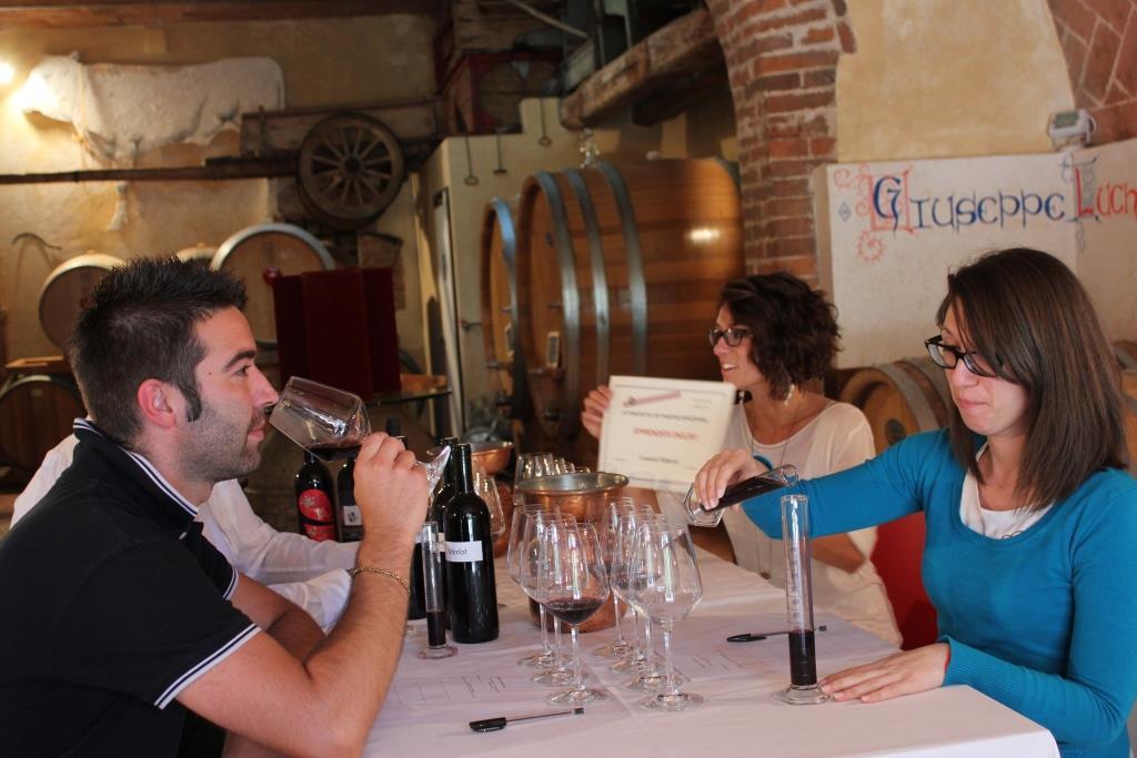 wine-experience-enologo-per-un-giorno