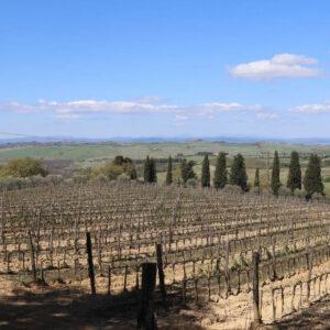 soggiorno-toscana-vino-natura