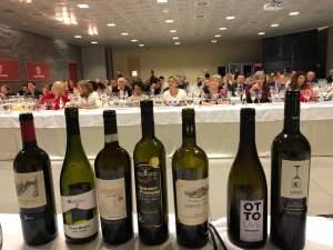 vecchie-vigne-Donne-del-Vino