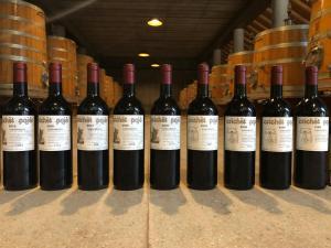 Roagna-Crichet-Paje-Barbaresco-wine-Most-expensive-Italian-wines