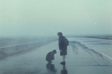 Paisagem-na-Neblina-1