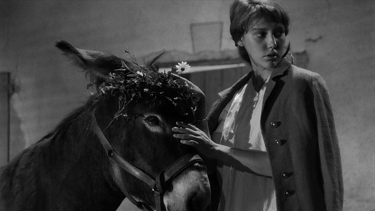 Peregrinacao-Exemplar-1966-3