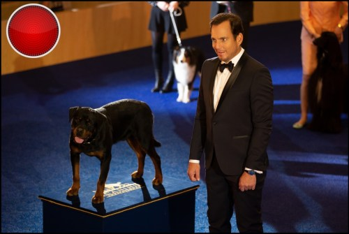 Show Dogs movie hd image