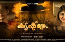 Krishnam Movie Review