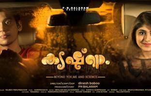 Krishnam Movie Review