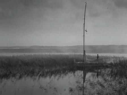 NzwWodzie Filme: A Faca Na Água
