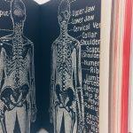 Confissoes_do_crematorio_caitlin-doughty_cinema_de_buteco_buteco_literario-4-800x600 Resenha: Confissões do Crematório – Verdades sinceras sobre a morte