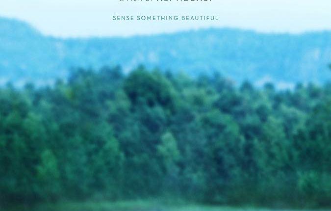 filmes de romance 2019 – border