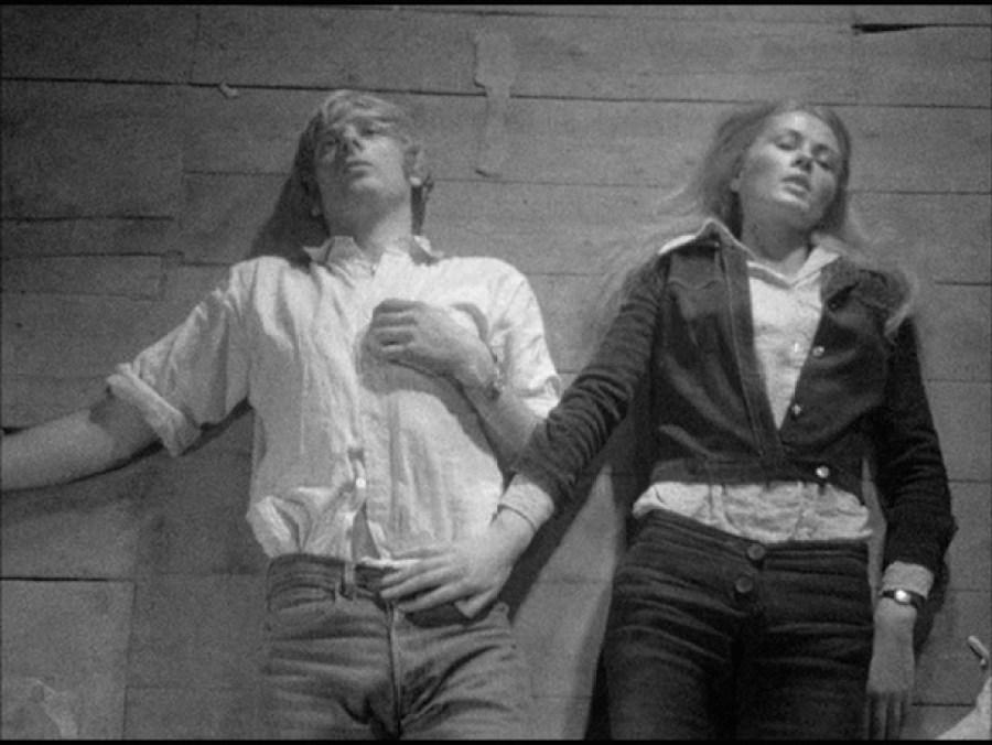 nightbirds 1970