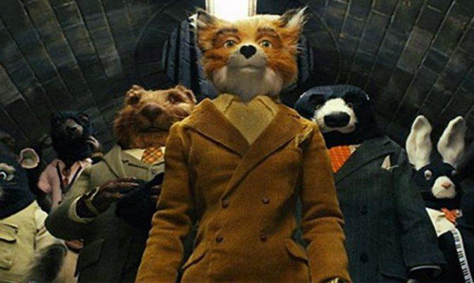 sr-fox_2