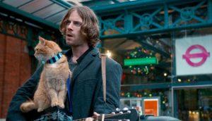 DVD-street-cat-named-bob