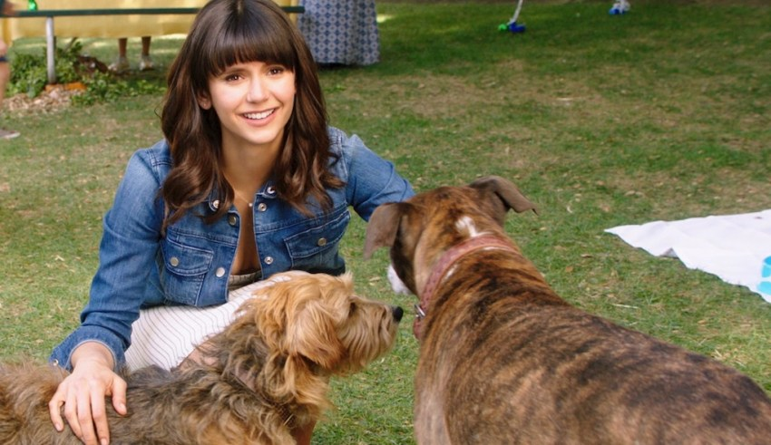 Nina Dobrev stars in LD Entertainment's DOG DAYS