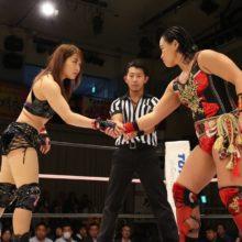 Evolution Televised: Women's Wrestling in 2018