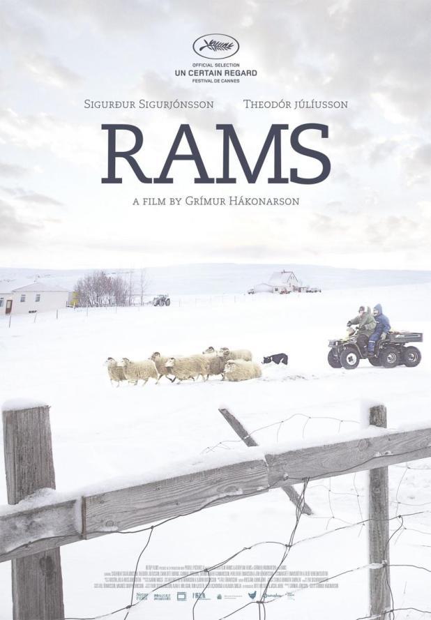 Póster de Rams (El valle de los carneros)
