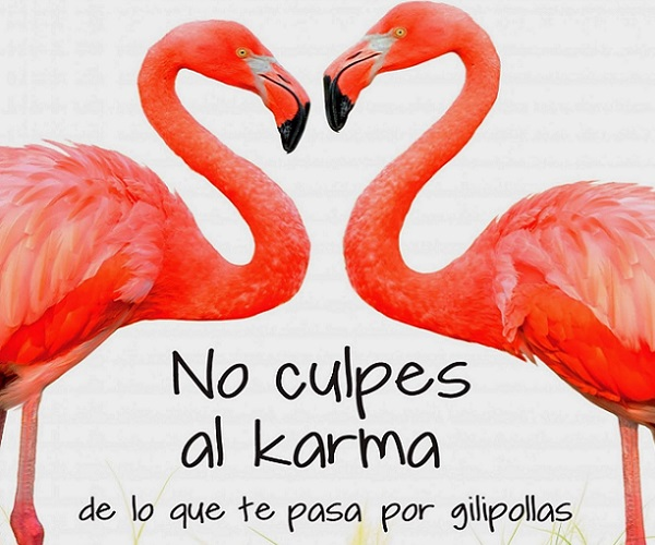 no-culpes-al-karma