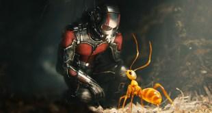 Ant-Man 2: On sait quand le tournage débutera ! photo 1